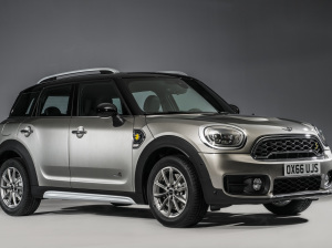 Mini ph countryman